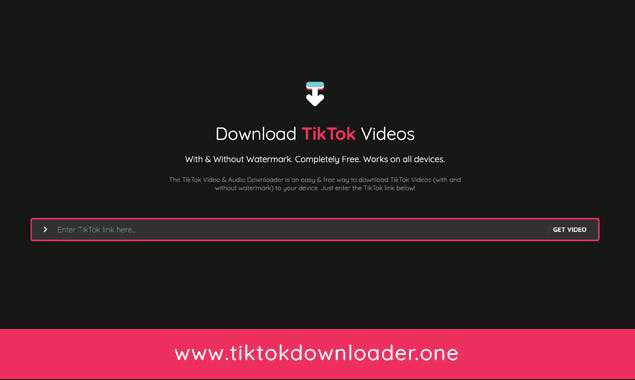TikTok downloader for downloading TikTok videos