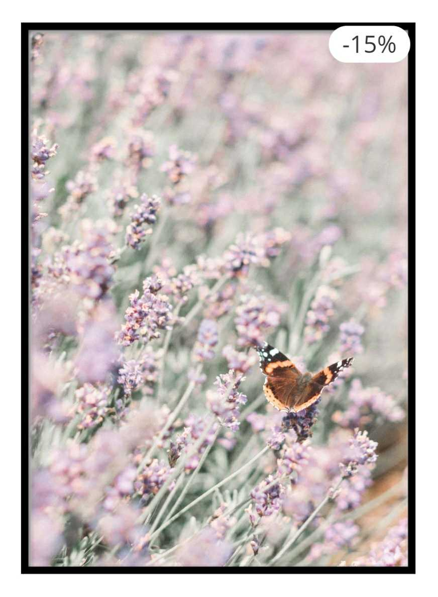 Butterfly on Blossom Poster