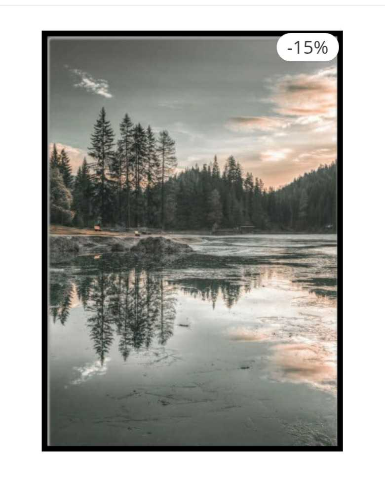Forest Reflection Poster Source
